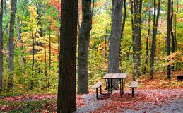 Picnic Table Royalty Free Stock Photos