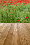 Picnic table Royalty Free Stock Image