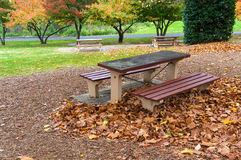 Picnic table and benches in an autumn park. Outdoor rest area with colourful trees on the background Stock Photo