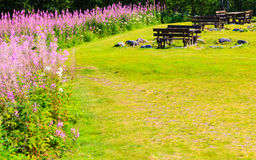 Picnic table and benches in Norway, Europe. Royalty Free Stock Photos