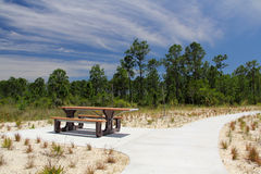 Picnic Table in Big Cypress Stock Photography