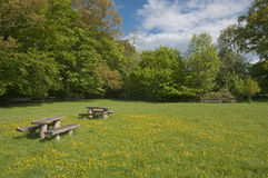 Picnic table in blooming meadow Royalty Free Stock Photography