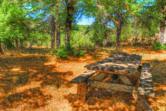 Picnic table in Burgos forest Royalty Free Stock Photo