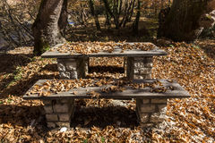 Picnic table covered with leaves in the forest Stock Photo