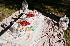 Picnic table with decor on grass with macaroon, strawberry and c Stock Photography