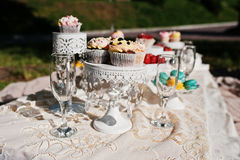 Picnic table with decor on grass with macaroon, strawberry and c. Up cake Royalty Free Stock Photography