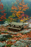 Picnic Table in Fall. View of picnic table overlooking lake in autumn stock image