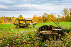 Picnic Table in a Field Covered with Fallen Autumn Leaves. Empty Picnic Table in a Field covered with Fallen Leaves on a Cloudy Autumn Day. Colourful Trees are Royalty Free Stock Photo