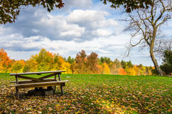 Picnic Table in a Field Covered with Fallen Autumn Leaves. Wooden Picnic Table in a Deserted Recreation Area Surrounded by Colourful Autumnal Trees at Sunset Royalty Free Stock Photo