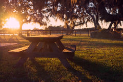 Picnic table in field. Wooden picnic table in field with trees at sunset sunrise golden hour looking peaceful serene meditative warm relaxing restful Royalty Free Stock Photography