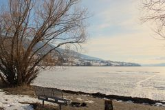 Picnic table and fire pit on shore line of frozen lake Royalty Free Stock Photos