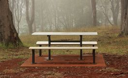 Foggy Park Bench with trees royalty free stock photo