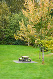Picnic table on green lawn in a park Royalty Free Stock Photos