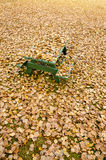 Picnic table hidden under golden autumn leaves Stock Photos