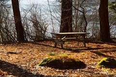 Picnic table with icy pond in the background. Lone picnic table surrounded by brown leaves in the late fall in Maine with an icy pond in the background stock photo