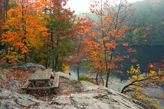 Picnic Table In Fall Royalty Free Stock Photo