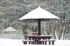 Free Picnic Table In Forest Covered With Snow During Winter Royalty Free Stock Image - 42854776