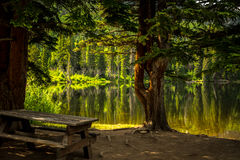 Picnic table beside lake Royalty Free Stock Photo