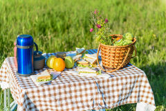 Picnic table loading with summer foods Royalty Free Stock Photos