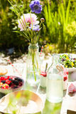Picnic table outdoors. Table ready for the picnic with fresh fruit, drinks and salad Stock Photos