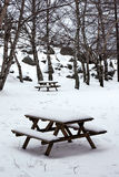 Picnic table in a park. Picnic table covered by snow in a park on winter Stock Photography