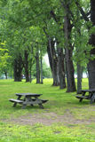 Picnic table in a park Stock Image