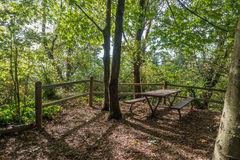 Picnic Table At Park. A picnic table in nestled between trees at Marine View Park in Normandy Park, Washington Royalty Free Stock Photo