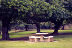 Picnic table in park. Stone picnic table in park for family gathering or lunch out  during holiday Royalty Free Stock Photos