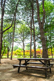 Picnic table in the park Stock Photography