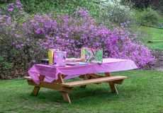 Picnic Table and Party Time Stock Photos