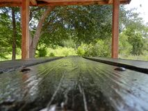 Picnic table. Perspective from picnic table Royalty Free Stock Images