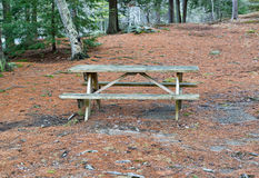 Picnic table in reclusive park setting Royalty Free Stock Photography