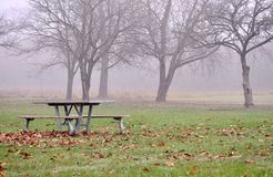 Picnic table and seats against foggy autumn park/ forest. Stock Images