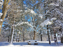Picnic table in snow Royalty Free Stock Photo