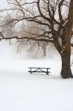 Picnic table in snow under a tree Stock Image