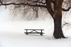 Picnic table in snow under a winter tree Stock Image