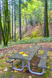 Picnic table with some autumn leaves on it. Table in the forest for autumn Stock Photos