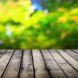 Picnic table. On sunny day Stock Images