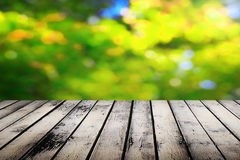 Picnic table. On sunny day Stock Photos