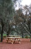 Picnic table and trees Royalty Free Stock Photography