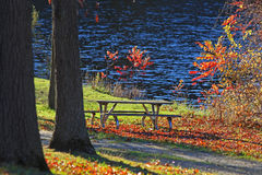 Picnic table under autumn trees Stock Images