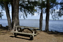 Picnic table under the trees Royalty Free Stock Photo