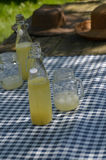 Picnic table with vintage picnic basket, blue checked table cloth. Bottles of lemonade and drinking jar glasses Stock Photography