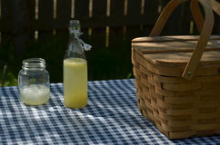 Picnic table with vintage picnic basket, blue checked table cloth Stock Photo
