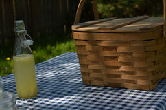 Picnic table with vintage picnic basket, blue checked table cloth Stock Photos