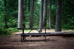 Picnic table in the wilderness Stock Images