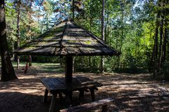 A picnic table in the wood royalty free stock images
