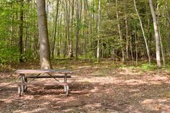 A picnic table in the woods Stock Photography