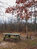Fall picnic stock photography