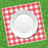 vector picnic tablecloth and empty plate Royalty Free Stock Photo